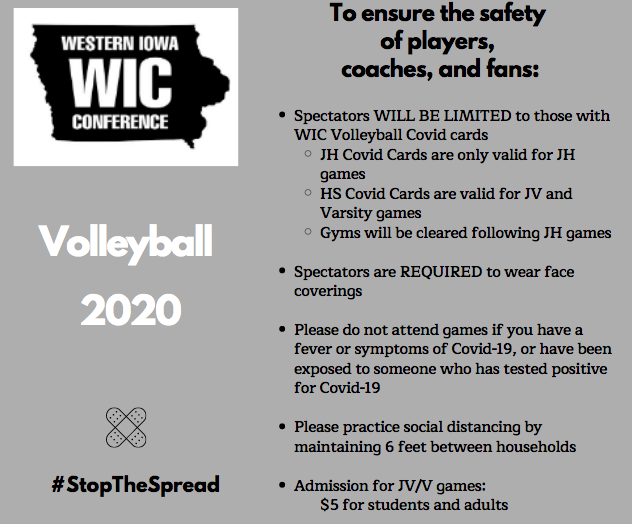Guidelines for Volleyball 2020